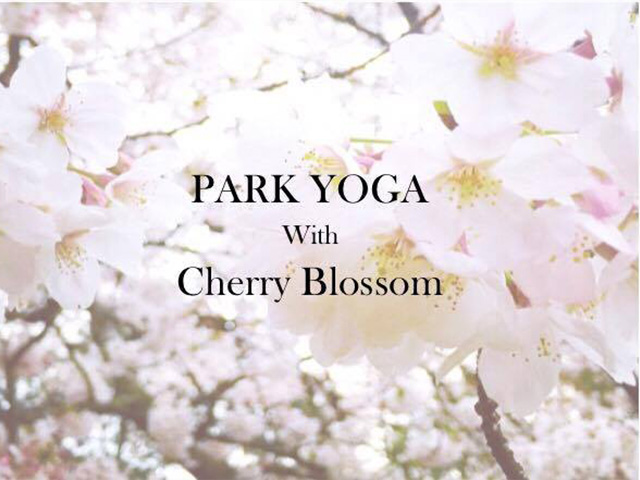 Yoga with Cherry Blossom